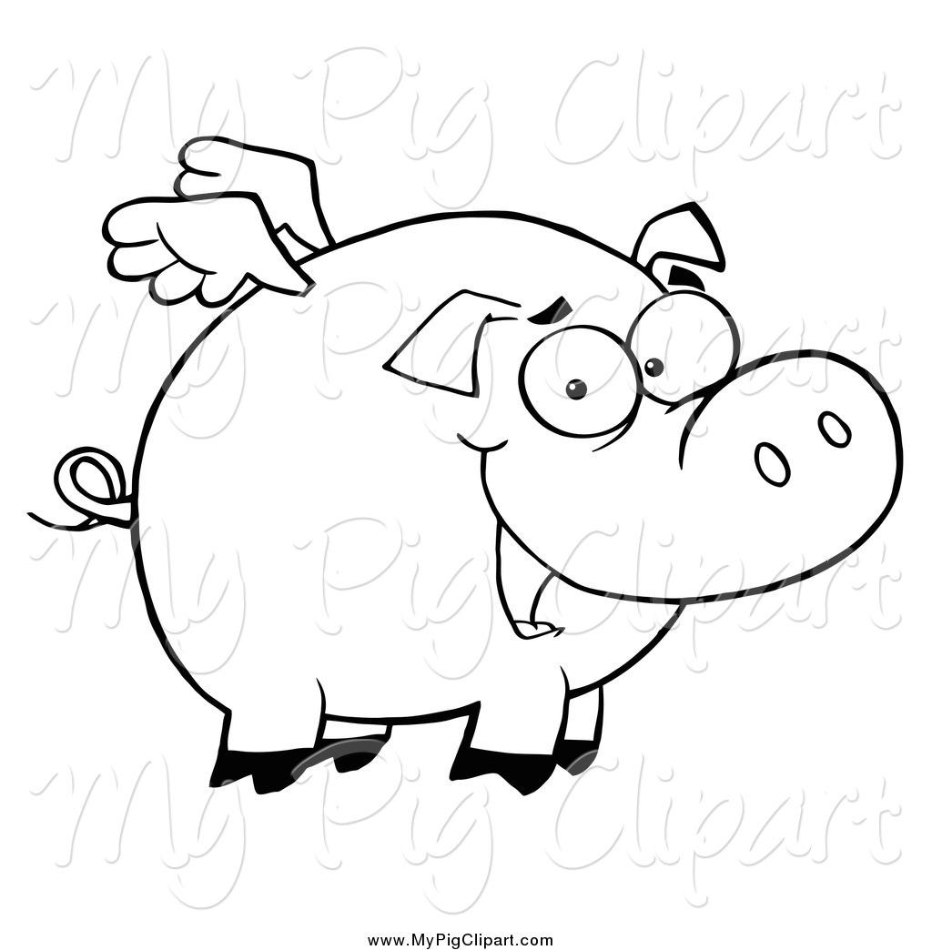 Swine Cartoon Related ...