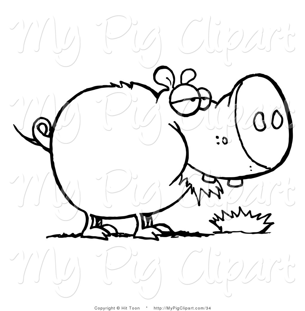 swine clipart of a coloring page outline of a fat pig chewing