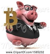 Swine Clipart of 3d Chubby Business Pig Holding a Bitcoin Symbol, on a White Background by Julos