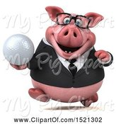 Swine Clipart of 3d Chubby Business Pig Holding a Golf Ball, on a White Background by Julos