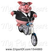 Swine Clipart of 3d Chubby Business Pig Riding a Chopper Motorcycle, on a White Background by Julos