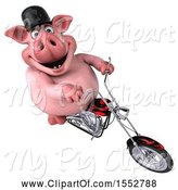 Swine Clipart of 3d Chubby Pig Biker Riding a Chopper Motorcycle, on a White Background by Julos