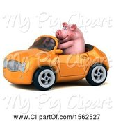 Swine Clipart of 3d Chubby Pig Driving a Convertible, on a White Background by Julos