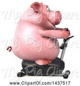 Swine Clipart of 3d Chubby Pig Exercising on a Spin Bike, on a White Background by Julos