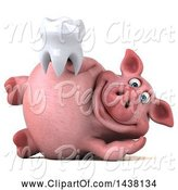 Swine Clipart of 3d Chubby Pig Holding a Tooth, on a White Background by Julos