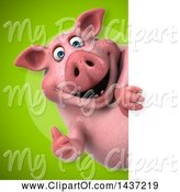 Swine Clipart of 3d Chubby Pig Looking Around a Sign by Julos