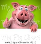 Swine Clipart of 3d Chubby Pig over a Sign by Julos
