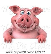 Swine Clipart of 3d Chubby Pig over a Sign, on a White Background by Julos
