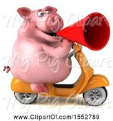 Swine Clipart of 3d Chubby Pig Riding a Scooter, on a White Background by Julos