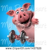 Swine Clipart of 3d Chubby Pig Working out with a Dumbbell by Julos