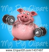 Swine Clipart of 3d Chubby Pig Working out with Dumbbells by Julos
