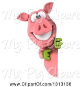 Swine Clipart of 3d Happy Gardener Pig Pointing Around a Sign by Julos