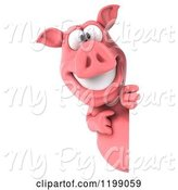 Swine Clipart of 3d Pig Mascot Looking Around and Pointing at a Sign by Julos
