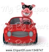 Swine Clipart of 3d Pig Wearing Sunglasses and Driving a Red Convertible Car by Julos