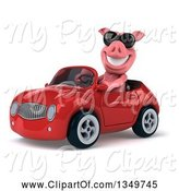 Swine Clipart of 3d Pig Wearing Sunglasses and Driving a Red Convertible Car to the Left by Julos