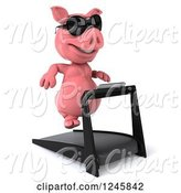 Swine Clipart of 3d Pig Wearing Sunglasses and Running on a Treadmill 2 by Julos