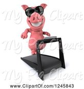Swine Clipart of 3d Pig Wearing Sunglasses and Running on a Treadmill 3 by Julos