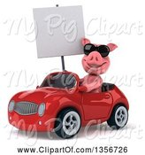 Swine Clipart of 3d Pig Wearing Sunglasses, Holding a Blank Sign and Driving a Red Convertible Car, on a White Background by Julos