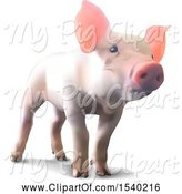 Swine Clipart of 3d Piglet on a White Background by Dero