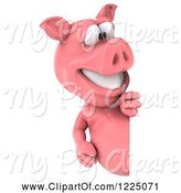 Swine Clipart of 3d Pink Pig Smiling and Looking Around a Sign by Julos