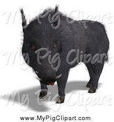 March 5th, 2014: Swine Clipart of a 3d Black Boar by Ralf61