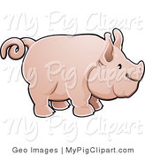 Swine Clipart of a Adorable Big Pink Pig with a Curling Tail in Profile by AtStockIllustration