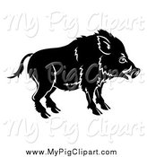 Swine Clipart of a Black and White Chinese Zodiac Boar by AtStockIllustration