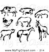 Swine Clipart of a Black and White Cow, Pig, Sheep, Chicken and Horses in Paintbrush Stroke Style on White by Prawny