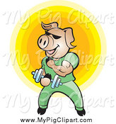 Swine Clipart of a Bodybuilder Pig Lifting Weights over a Yellow Circle by Lal Perera