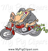 Swine Clipart of a Cartoon Biker Pig on His Motorcycle by Ron Leishman
