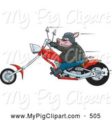 Swine Clipart of a Chubby Tough Hog Riding a Red Chopper Motorcycle and Speeding past by Dennis Holmes Designs