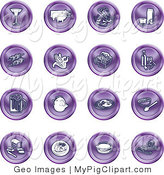 Swine Clipart of a Collection of Sixteen Purple Food Icons of a Martini, Pigs, Fish, Juice, Kebobs, Corn, Wine, Beer, Chicken, Breakfast, Fruit, Bread, Meal, Burger and Cheese by AtStockIllustration