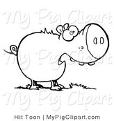 Swine Clipart of a Coloring Page Outline of a Chubby Pig Eating Grass, Shocked with an Open Mouth by Hit Toon