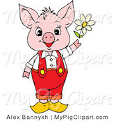 Swine Clipart of a Cute and Young Pink Piggy in Red Pants and Suspenders, Holding a White Spring Daisy by Alex Bannykh