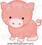 Swine Clipart of a Cute Pink Pig with a Curly Tail by BNP Design Studio