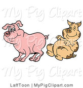 Swine Clipart of a Dirty Pig Rolling and Laughing at a Clean Piggy by LaffToon