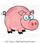 Swine Clipart of a Happy Smiling Chubby Pink Pig with Spots by Hit Toon