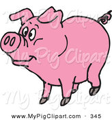 Swine Clipart of a Pink Curly Tailed Piggy Looking Left on White by Dennis Holmes Designs