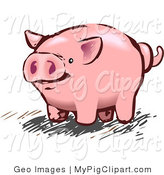 Swine Clipart of a Pink Pig or Piggy Bank with a Curly Tail by AtStockIllustration