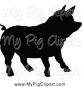 Swine Clipart of a Silhouetted Black Pig Facing Right by Prawny Vintage