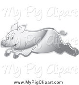 Swine Clipart of a Silver Running Pig by Lal Perera
