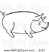 Swine Clipart of a Sketched Pig Outline by Prawny Vintage
