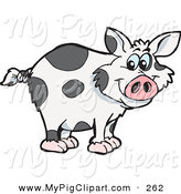 Swine Clipart of a Spotted Cloned Pig with a Dalmatian Coat Pattern Facing Right by Dennis Holmes Designs
