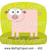 Swine Clipart of a Square Bodied Pink Pig on Green by Qiun