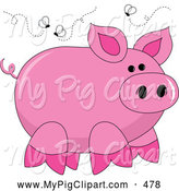 Swine Clipart of a Stinky Pink Piggy Surrounded by Flies on White by Pams Clipart