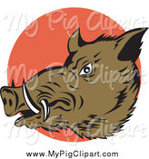 Swine Clipart of a Wild Boar over an Orange Circle by Patrimonio