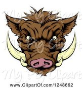 Swine Clipart of Aggressive Boar Mascot Face by AtStockIllustration