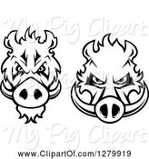 Swine Clipart of Black and White Aggressive Boar Heads by Vector Tradition SM