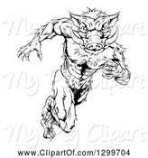 Swine Clipart of Black and White Aggressive Sprinting Muscular Boar Guy by AtStockIllustration