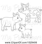 Swine Clipart of Black and White Pig Family by Alex Bannykh
